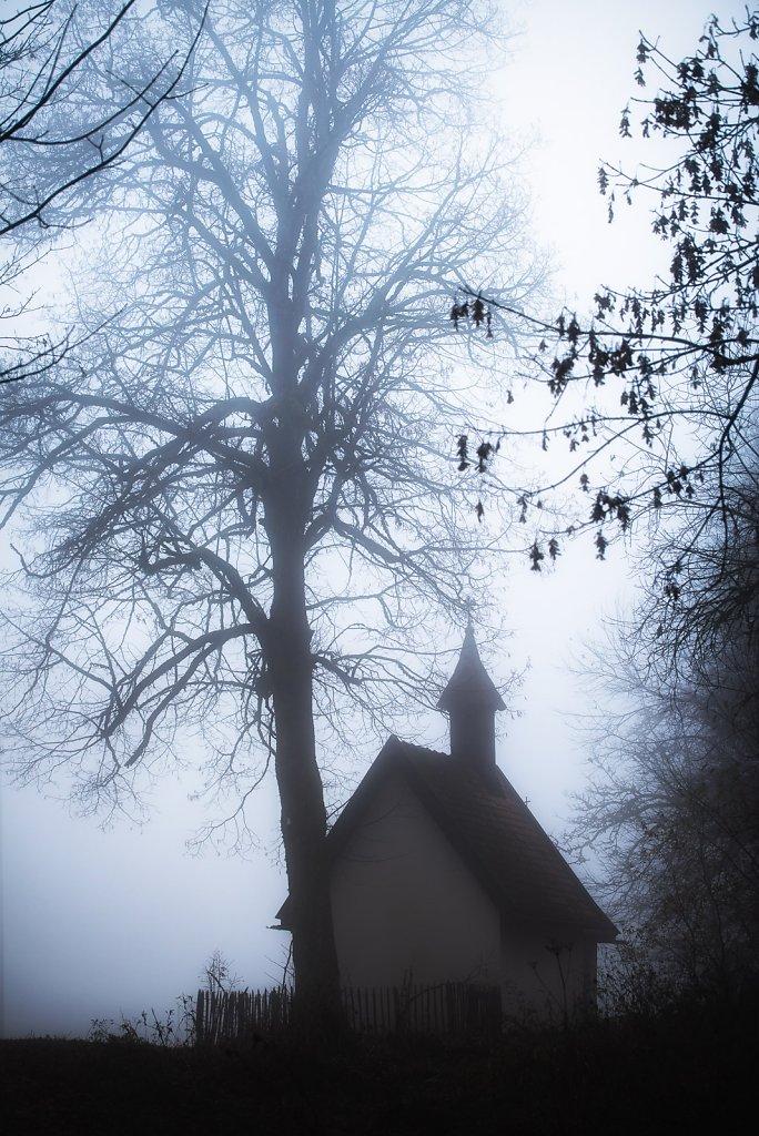 taubenberg-nebel-0058.jpg